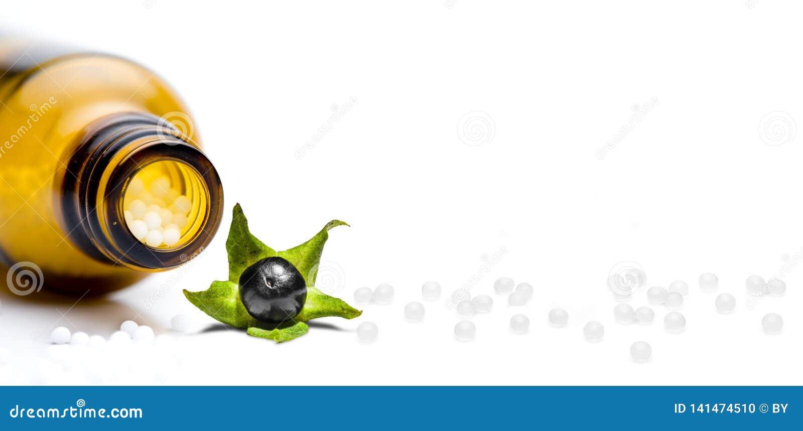 Pilules d homéopathie avec la belladone d isolement