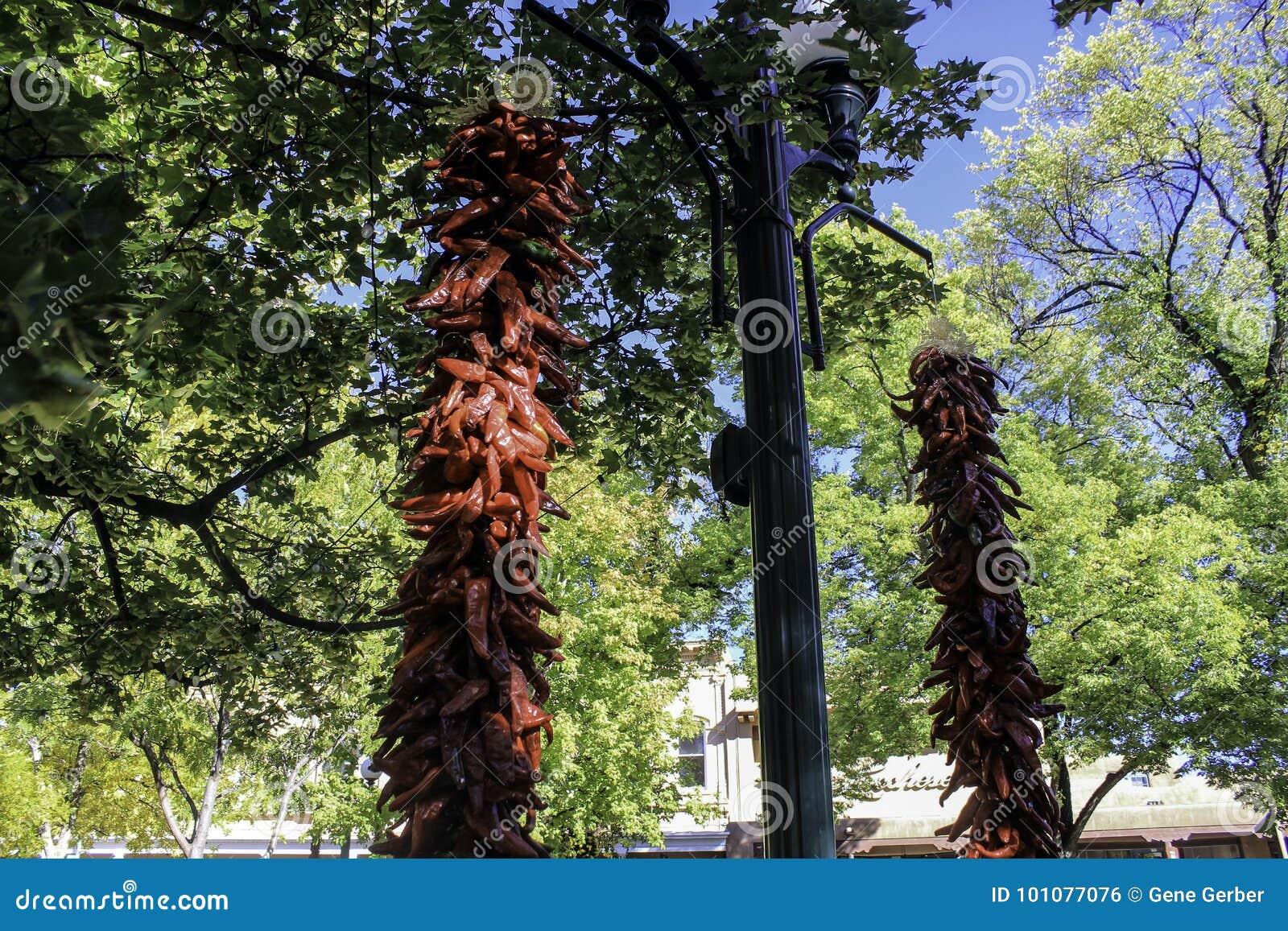 Pimentas na plaza
