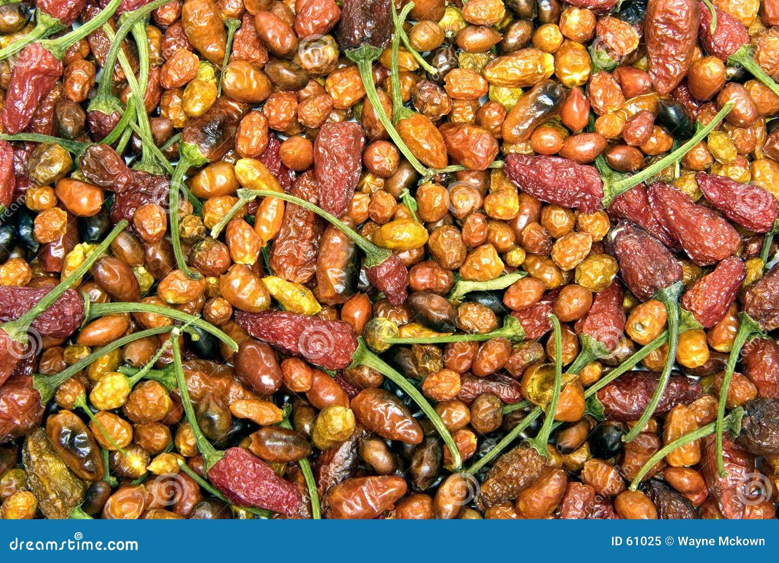 Pimentas quentes secadas