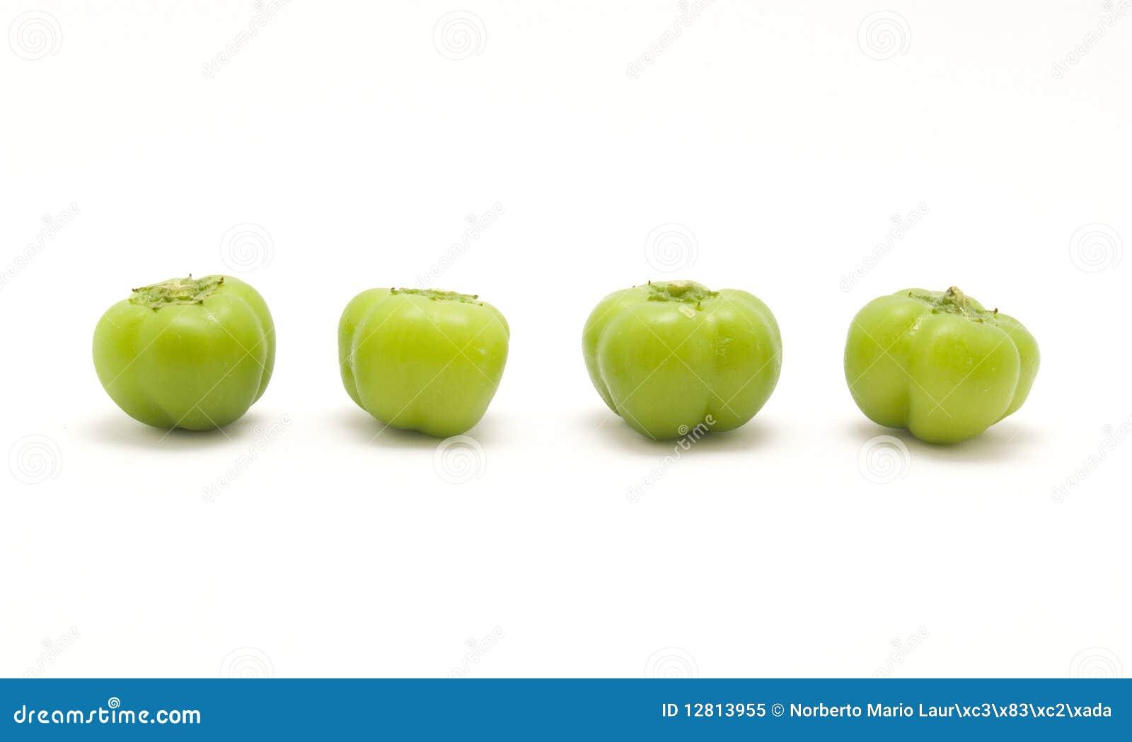 Pimentas verdes do bebê