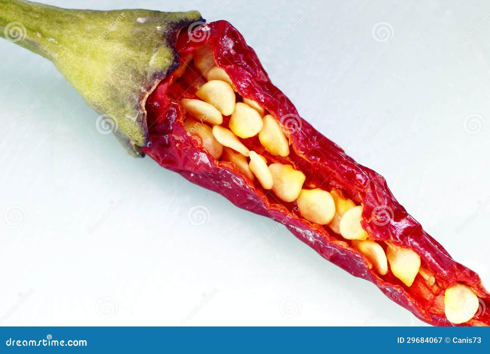 pimienta y semillas de chile imagen de archivo imagen de