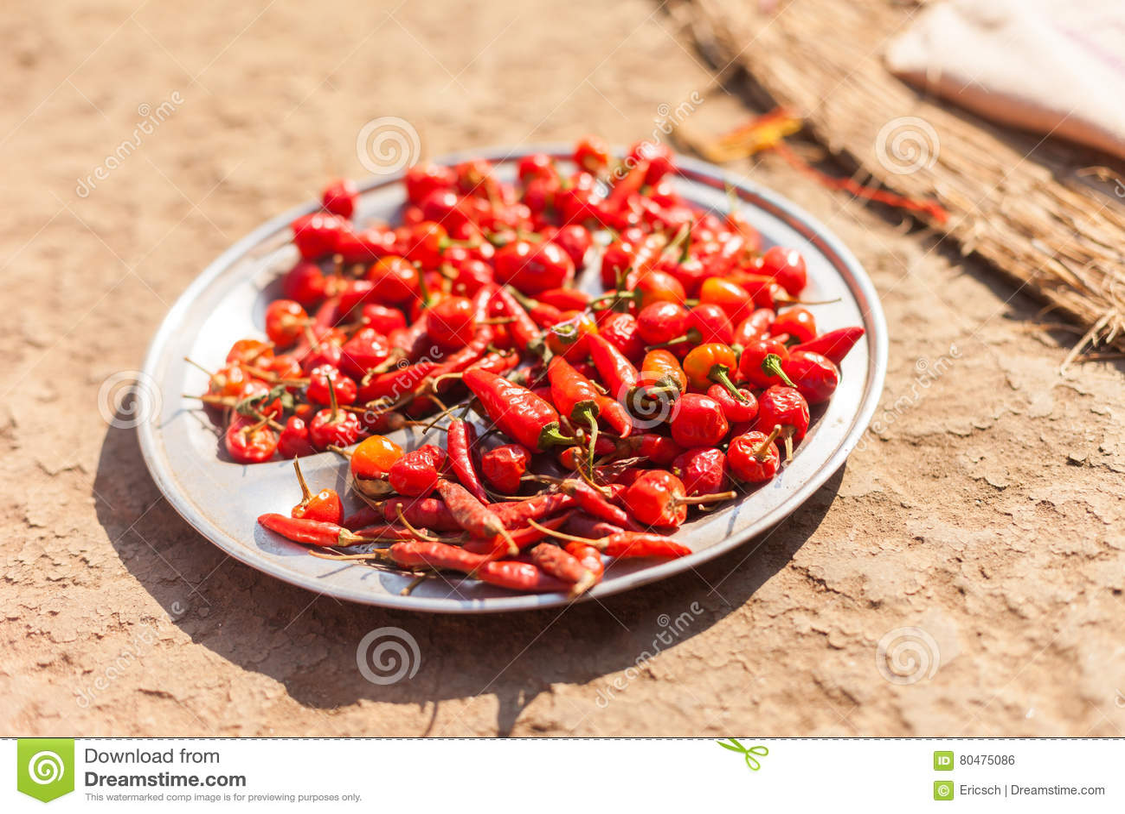 Pimientas de chile que se secan en el Sun