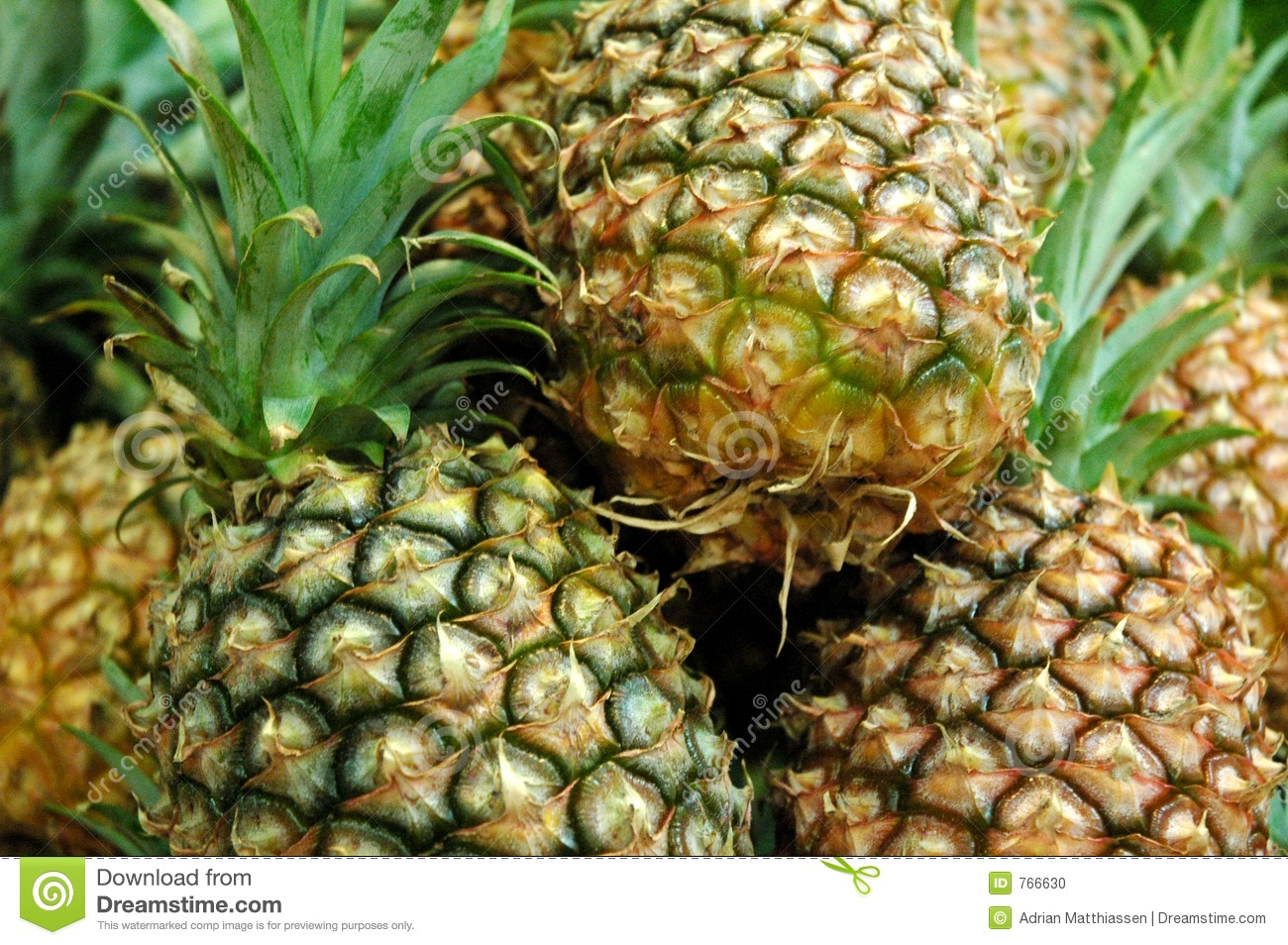 The Pinapples 2