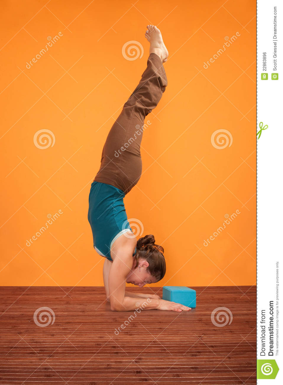 Pincha Mayurasana Yoga Pose Stock Photo Image 22863896
