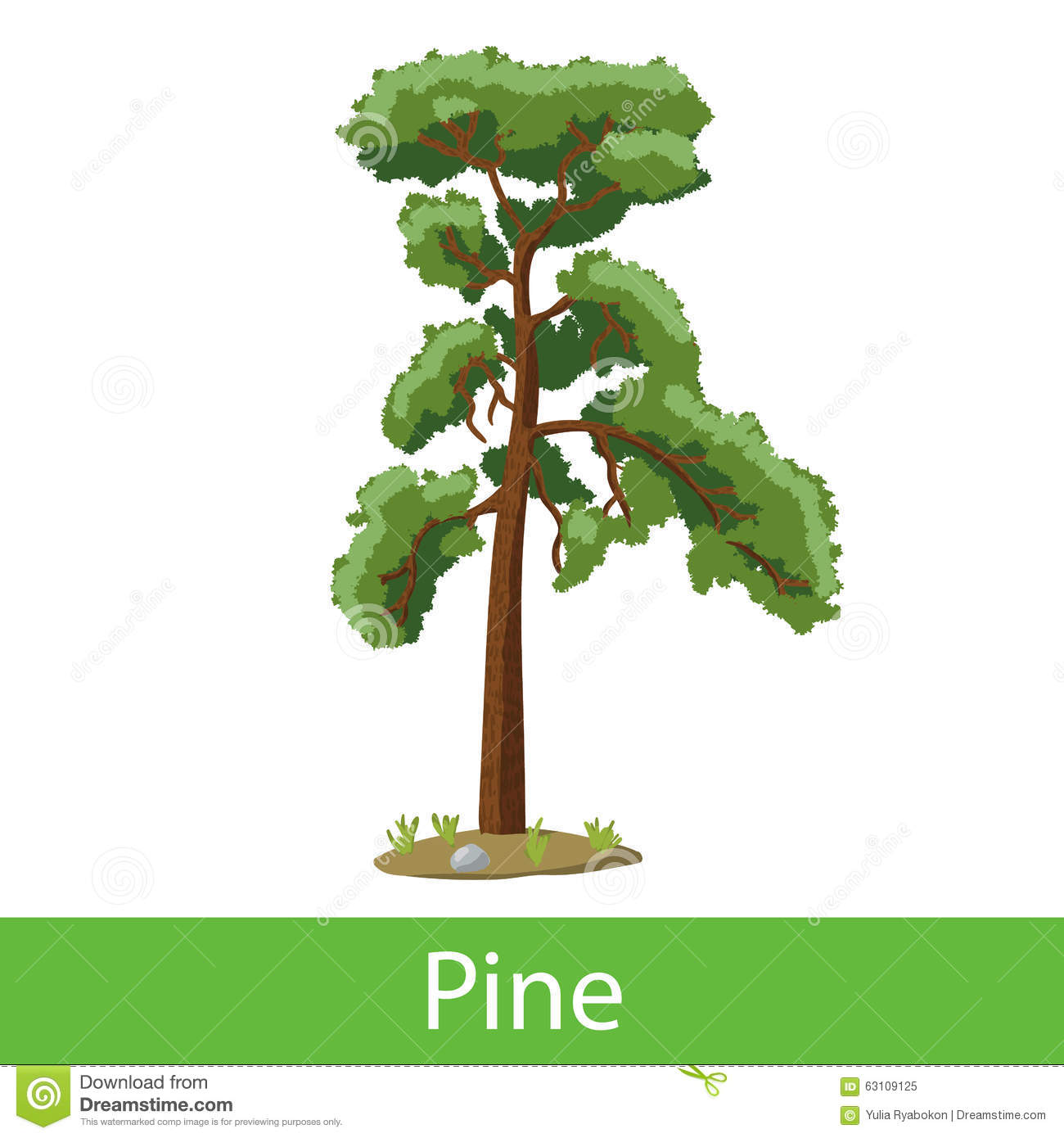 Pine cartoon tree. Single illustration on a white background.