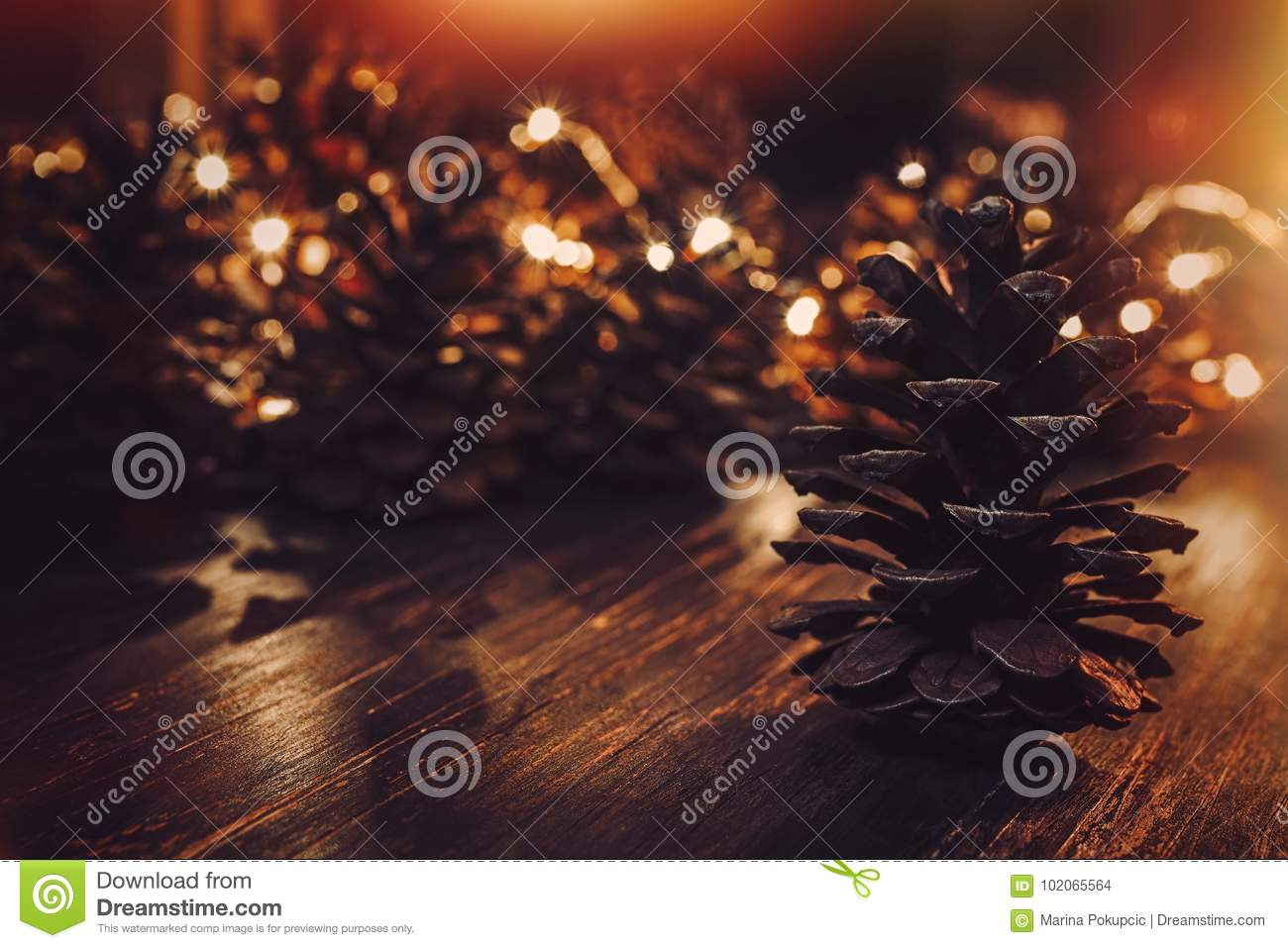 Download Pine Cones On A Dark Background Illuminated Stock Photo - Image of copy, festive: 102065564