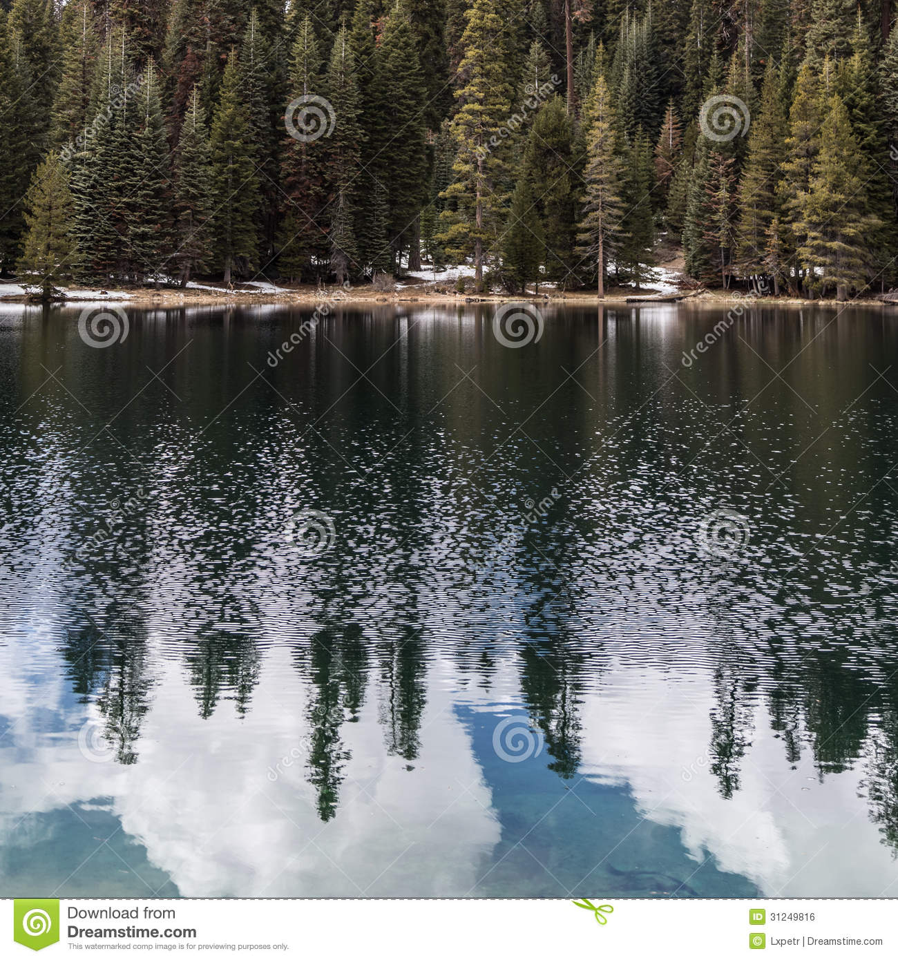 Tulare (CA) United States  city photos gallery : of Sequoia National Park in Tulare County, California, United States ...