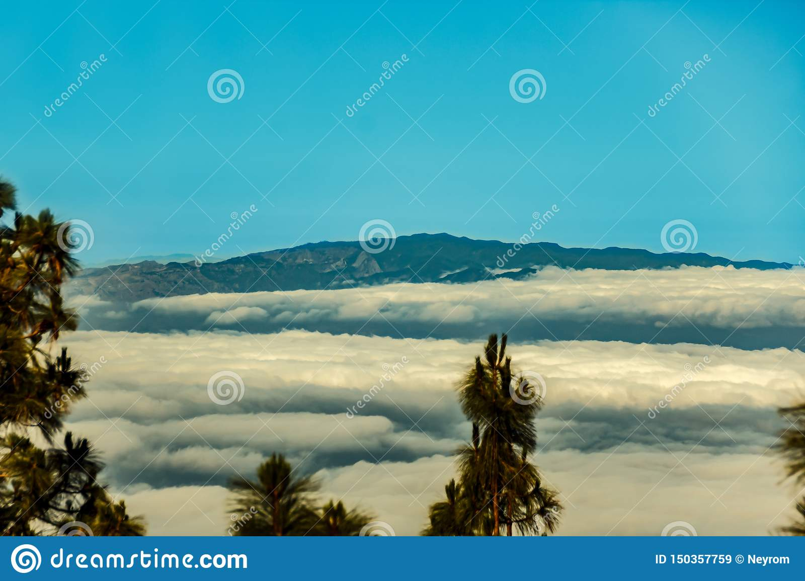 Pine forest of Tenerife, silhouette of La Gomera and Il Hierro islands on background. View from 1900m altitude. Long lens shot.