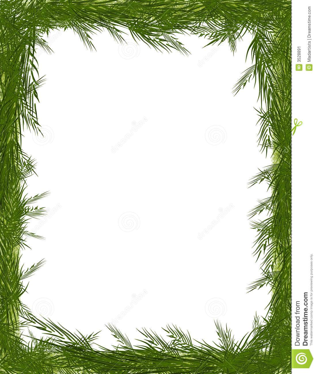 pine needle tree branch frame stock image image 3528891