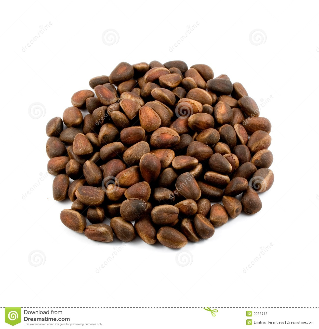 how to find pine nuts