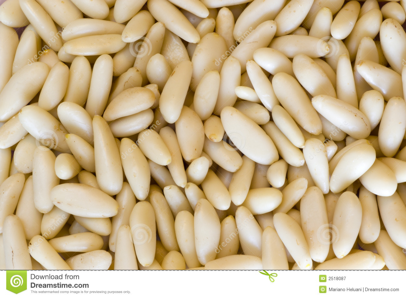 Pine Nuts Royalty Free Stock Photography - Image: 2518087