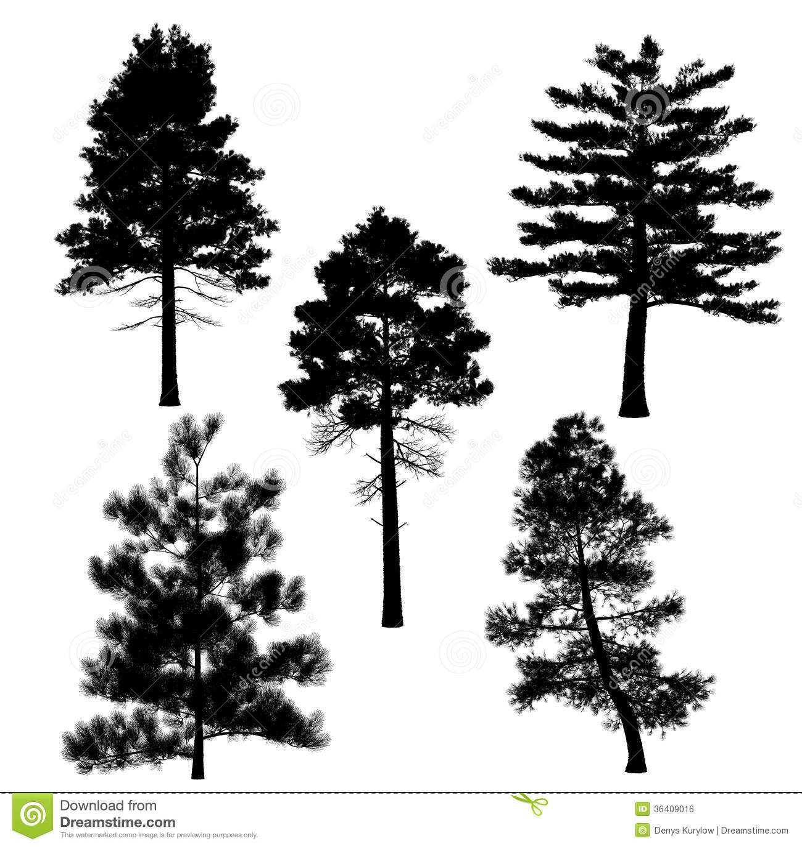 находится тату лес ель дуб можете
