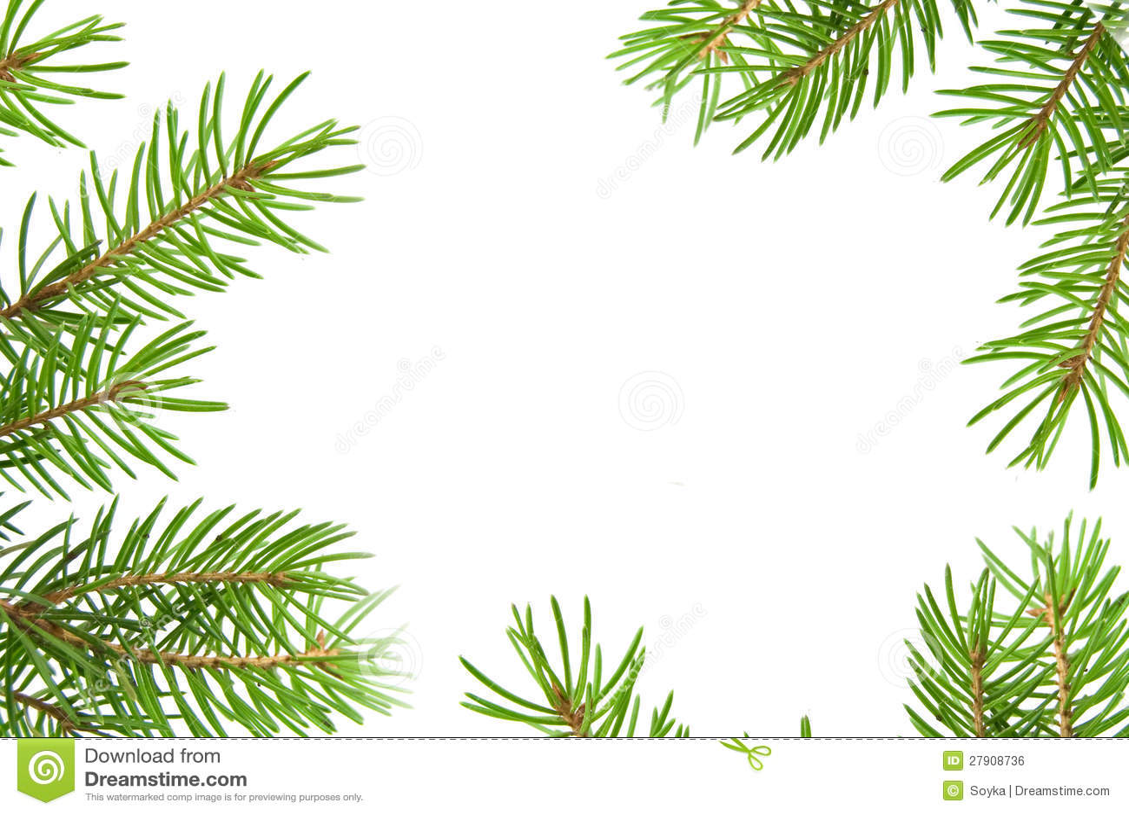 clipart tree branch borders - photo #28