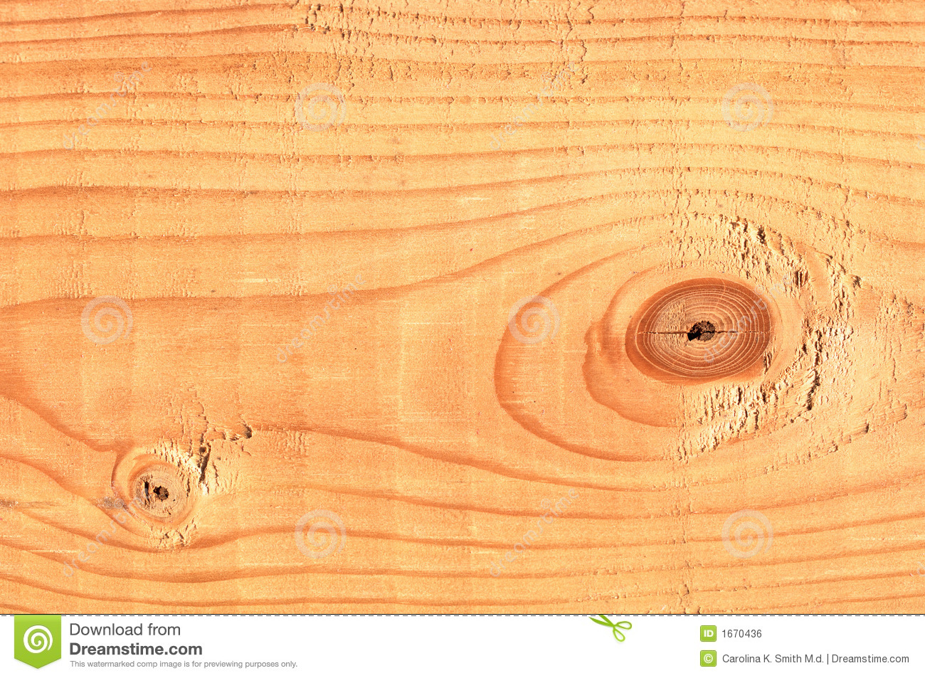 Pine tree lumber macro royalty free stock image image for Pine tree timber