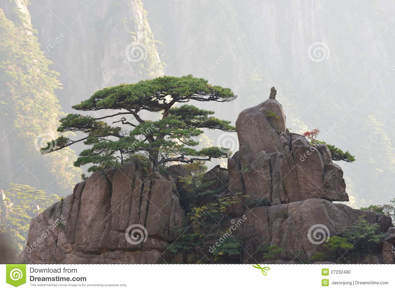 Soilmud Download likewise Fig Html besides Highrisenight also Fig Html in addition Pine Tree Top Mountain. on yellow objects