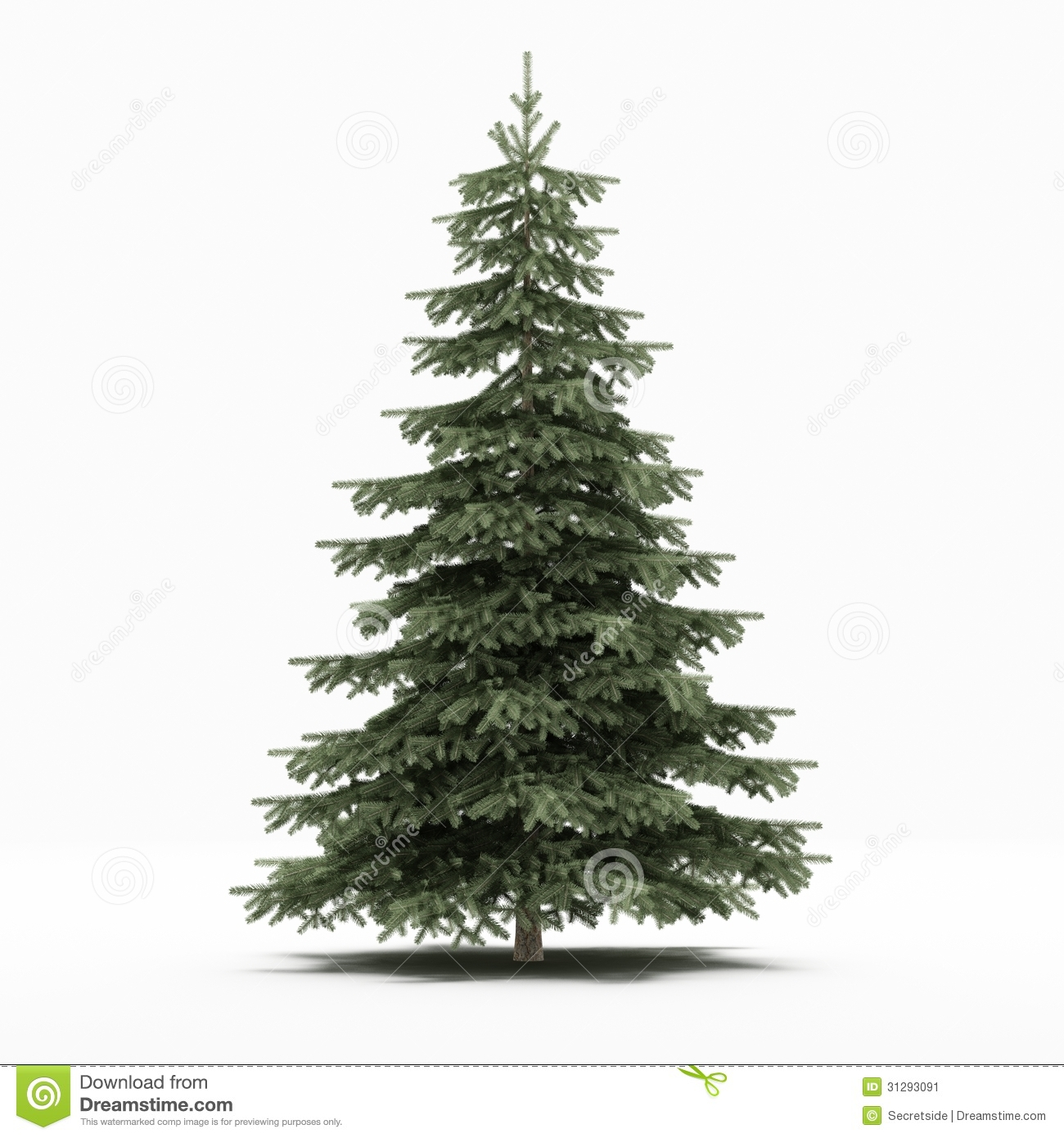 With white christmas background and snow vector vector background - Pine Tree Stock Image Image 31293091