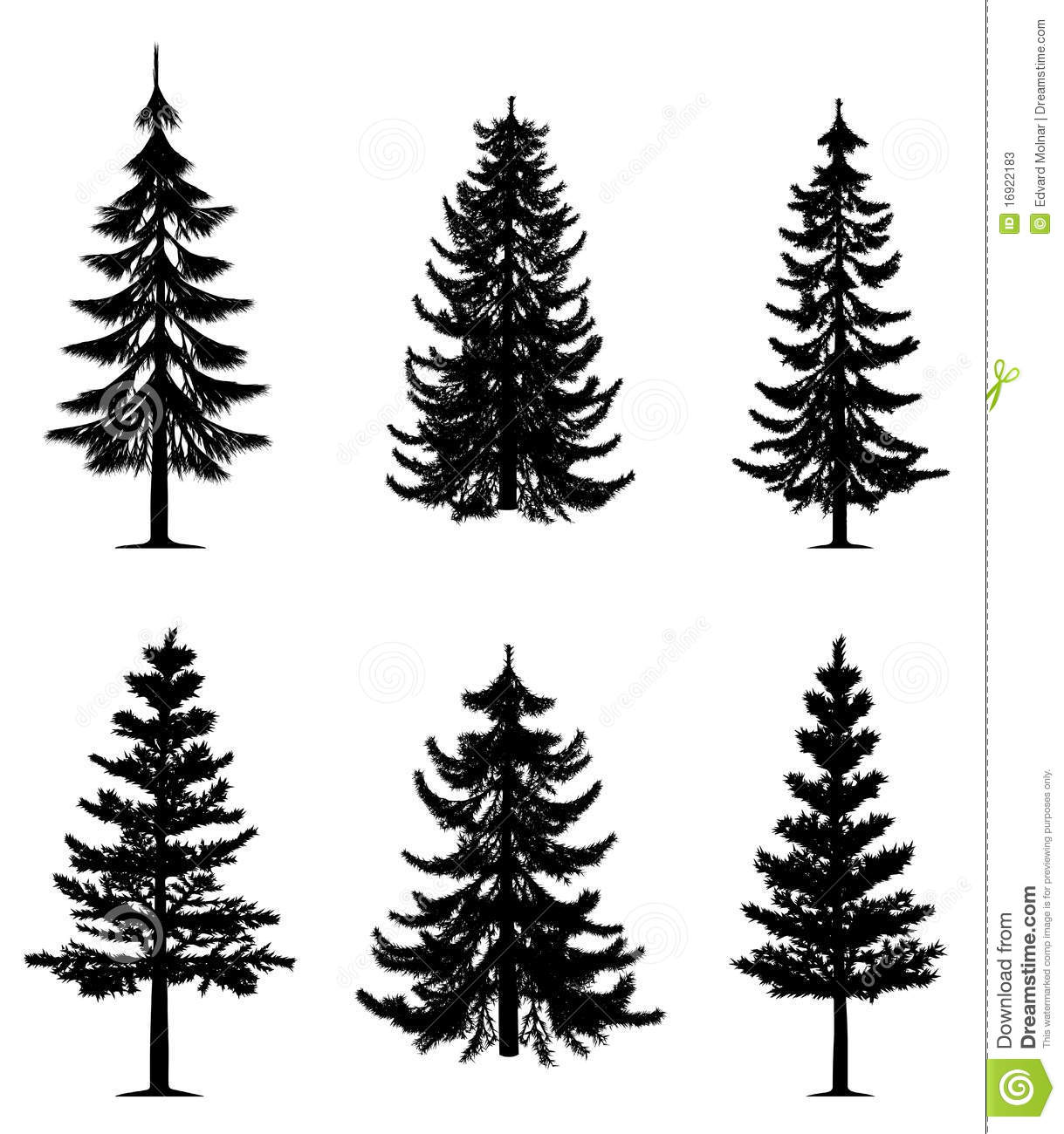 Pine Trees Collection Stock Vector Illustration Of Icon 16922183