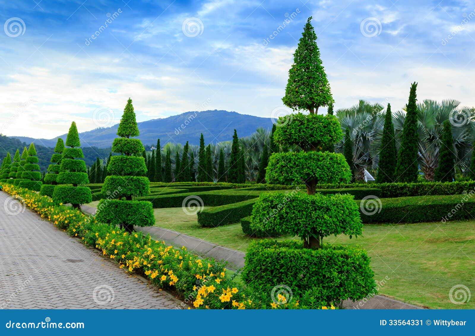 Superior Royalty Free Stock Photo. Download Pine Trees Garden ...