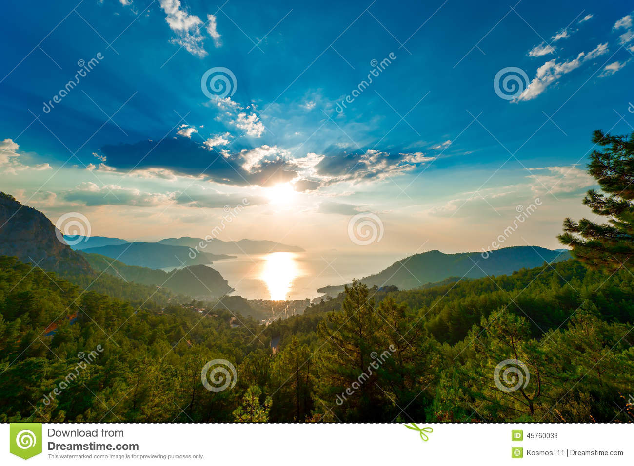 Pine trees in the mountains and the rising sun