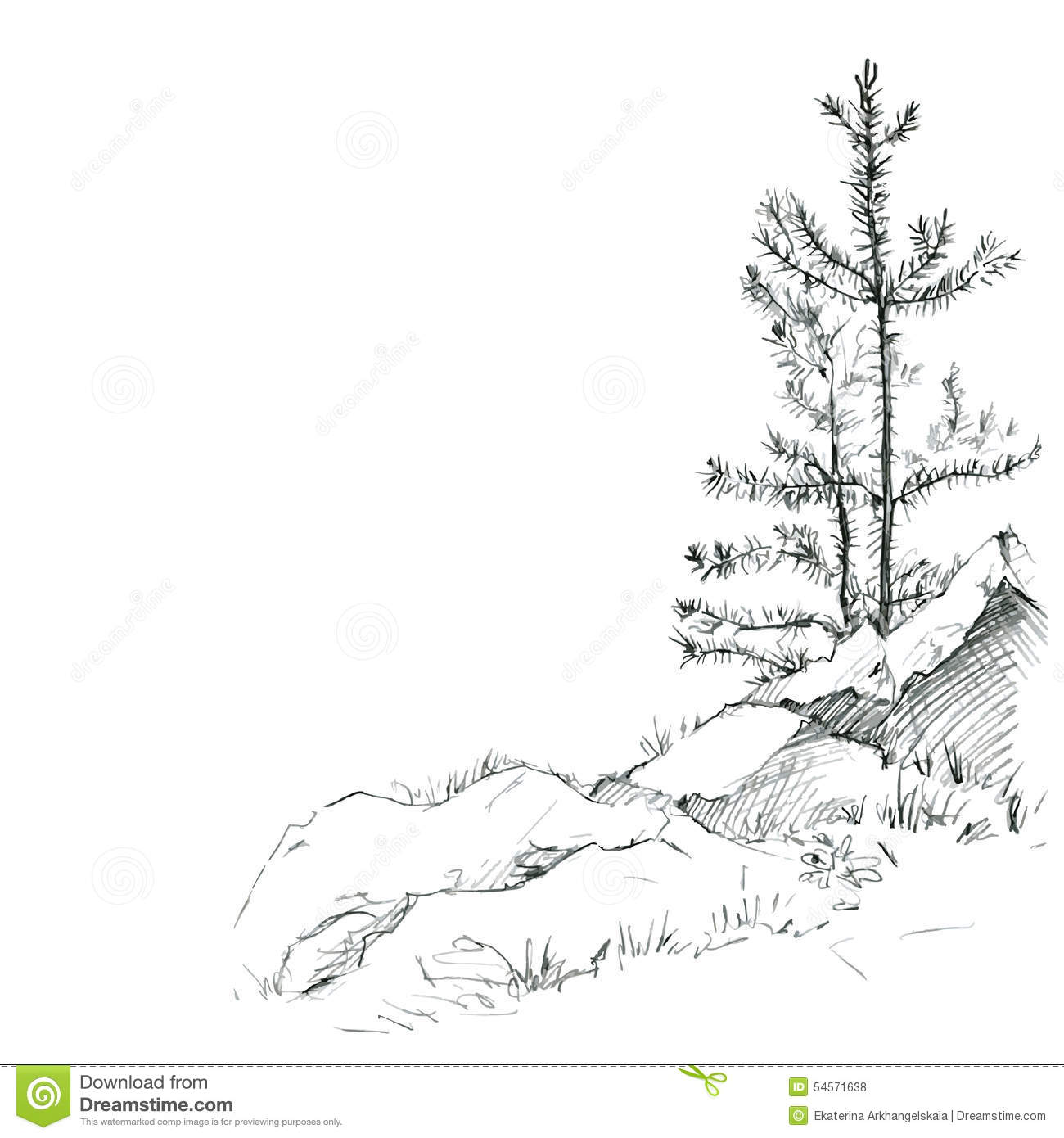 ... pencil, sketch of wild nature, forest sketch, hand drawn vector