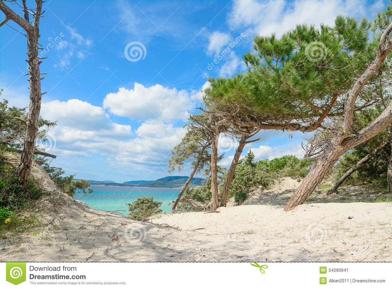 pine beach online dating 11% of american adults have used an online dating site or a mobile dating app.