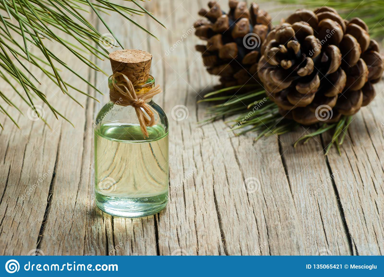 Pine Turpentine Essential Oil In Glass Bottle Stock Image - Image of