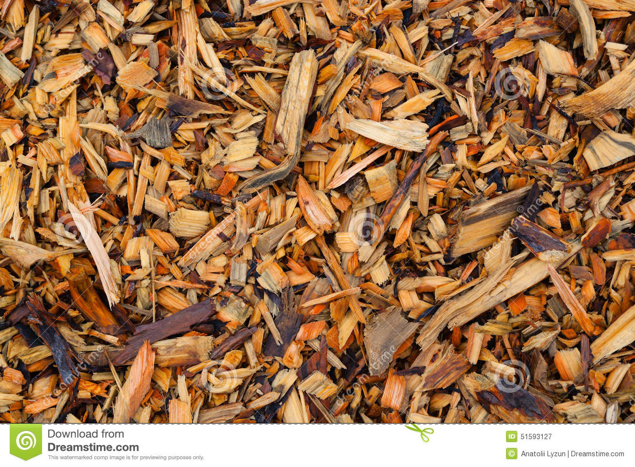 Pine wood chips pieces of texture stock photo