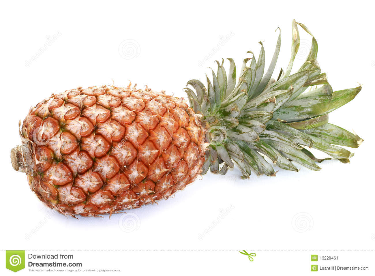pineaplle stock image image of pineapple citric acid