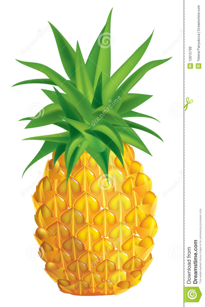 Clip Art Pineapple - Viewing Gallery