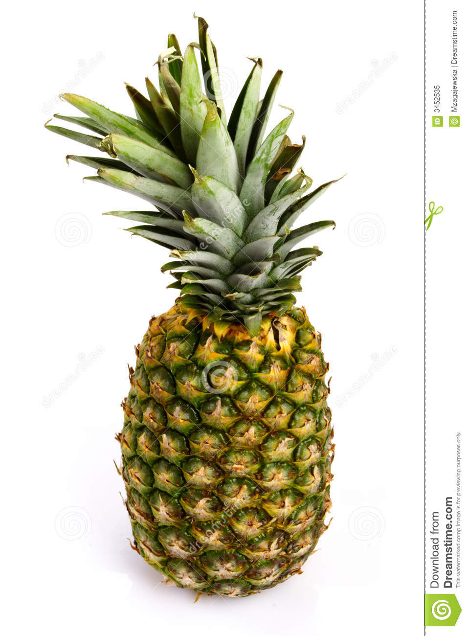 pineapple stock image image of ananas acid delicious