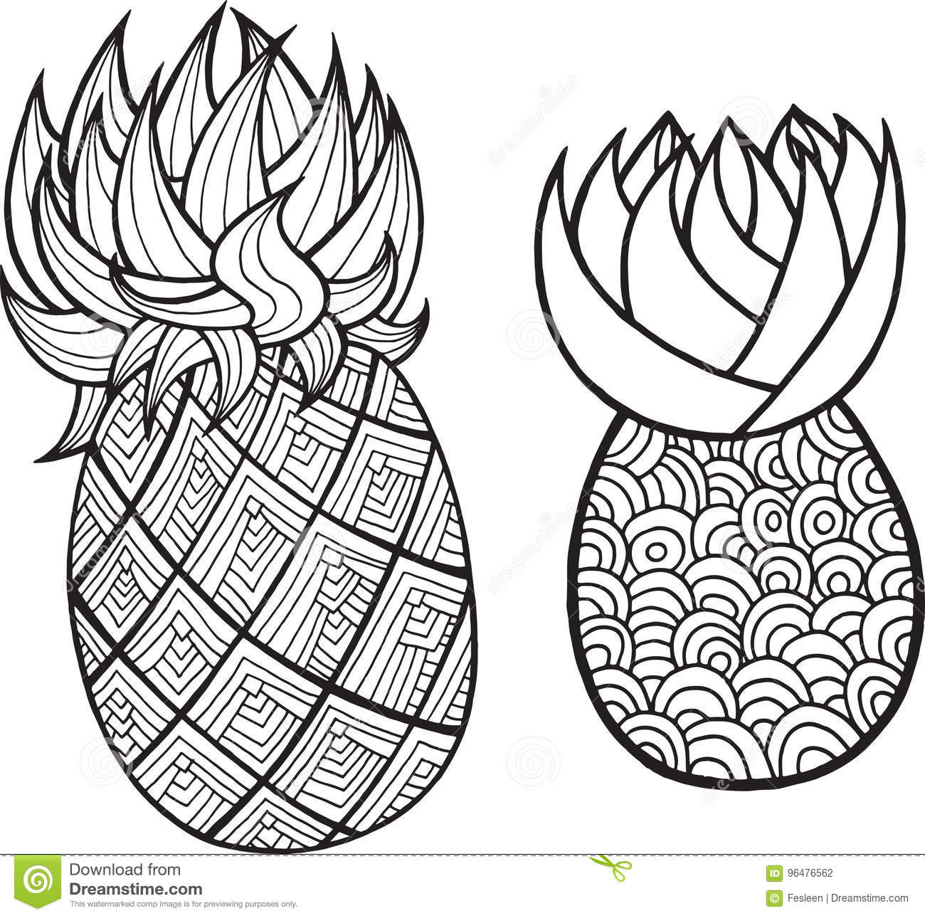 Pineapple and ananas coloring page graphic vector black and white art for coloring books for adults tropical and exotic fruit line illustration