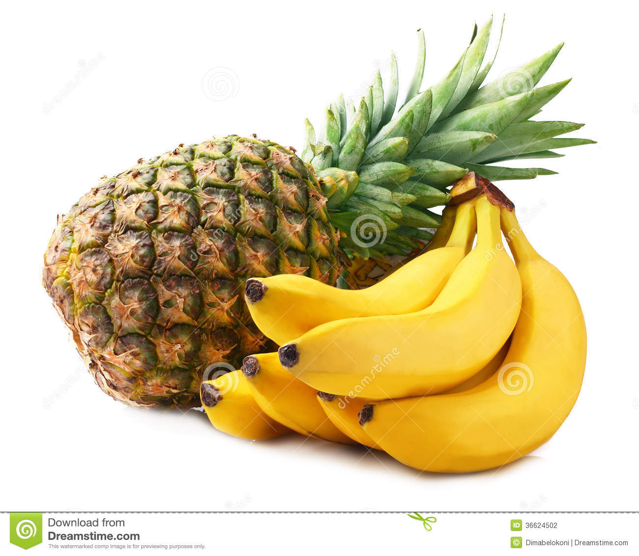 2d Room Designer Pineapple And Bananas Stock Photography Image 36624502