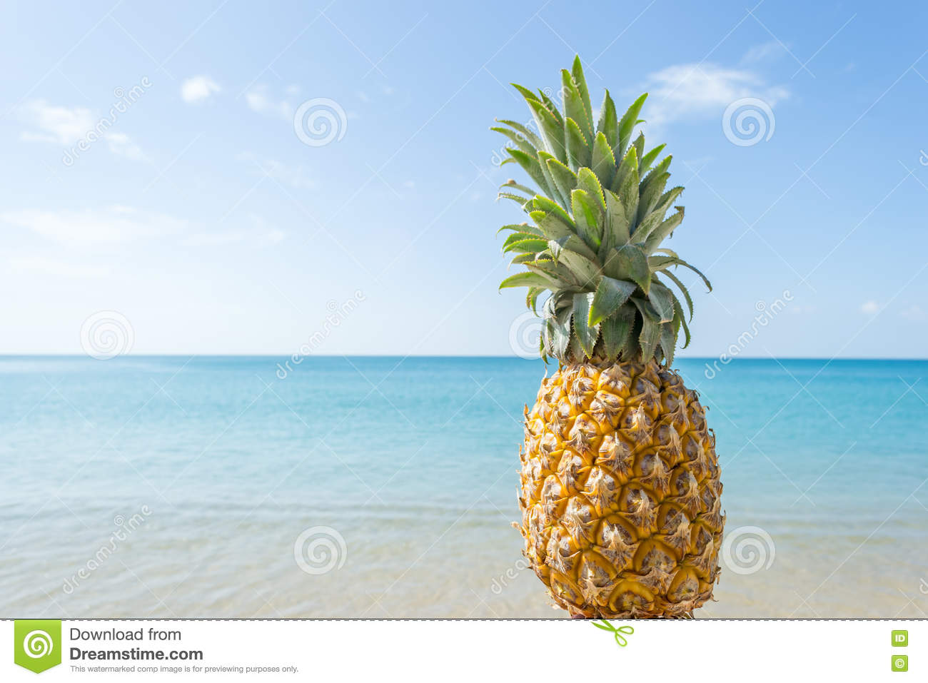Pineapple At The Beach: Pineapple With Beautiful Beach And Blue Sky Stock Image