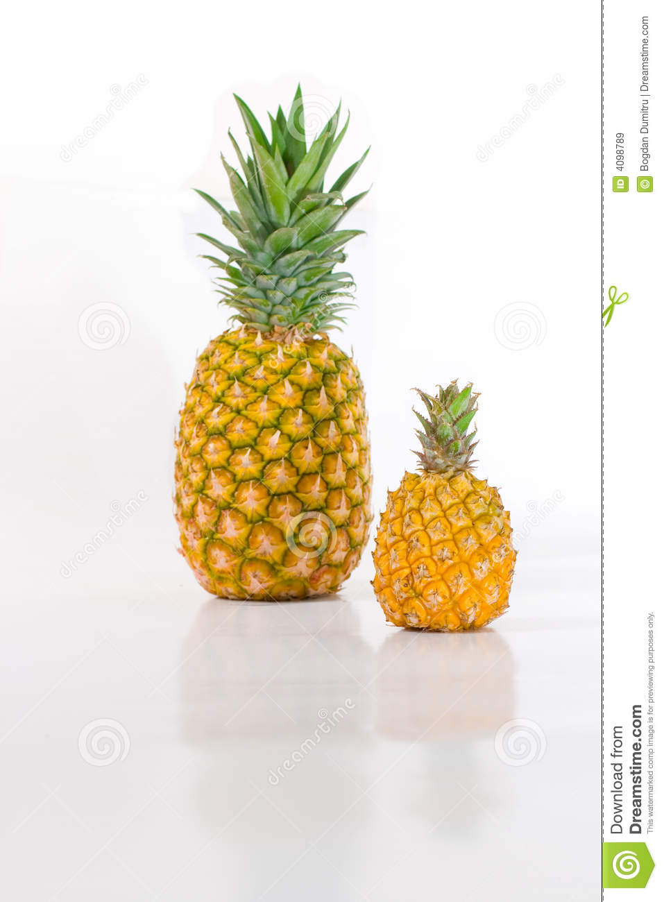Image result for large and small pineapple