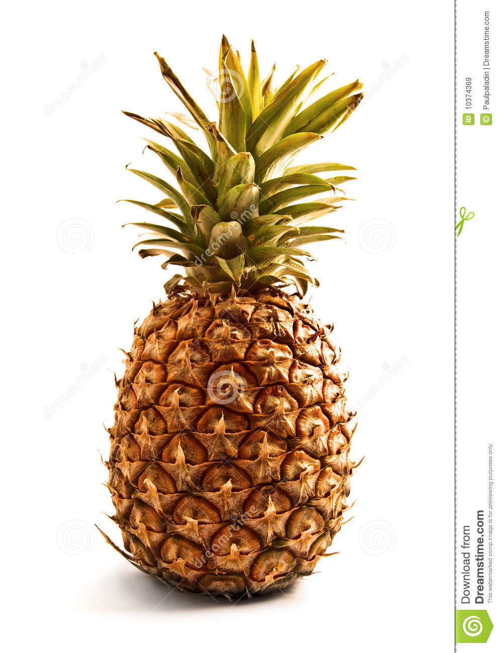 define fruit is pineapple a fruit