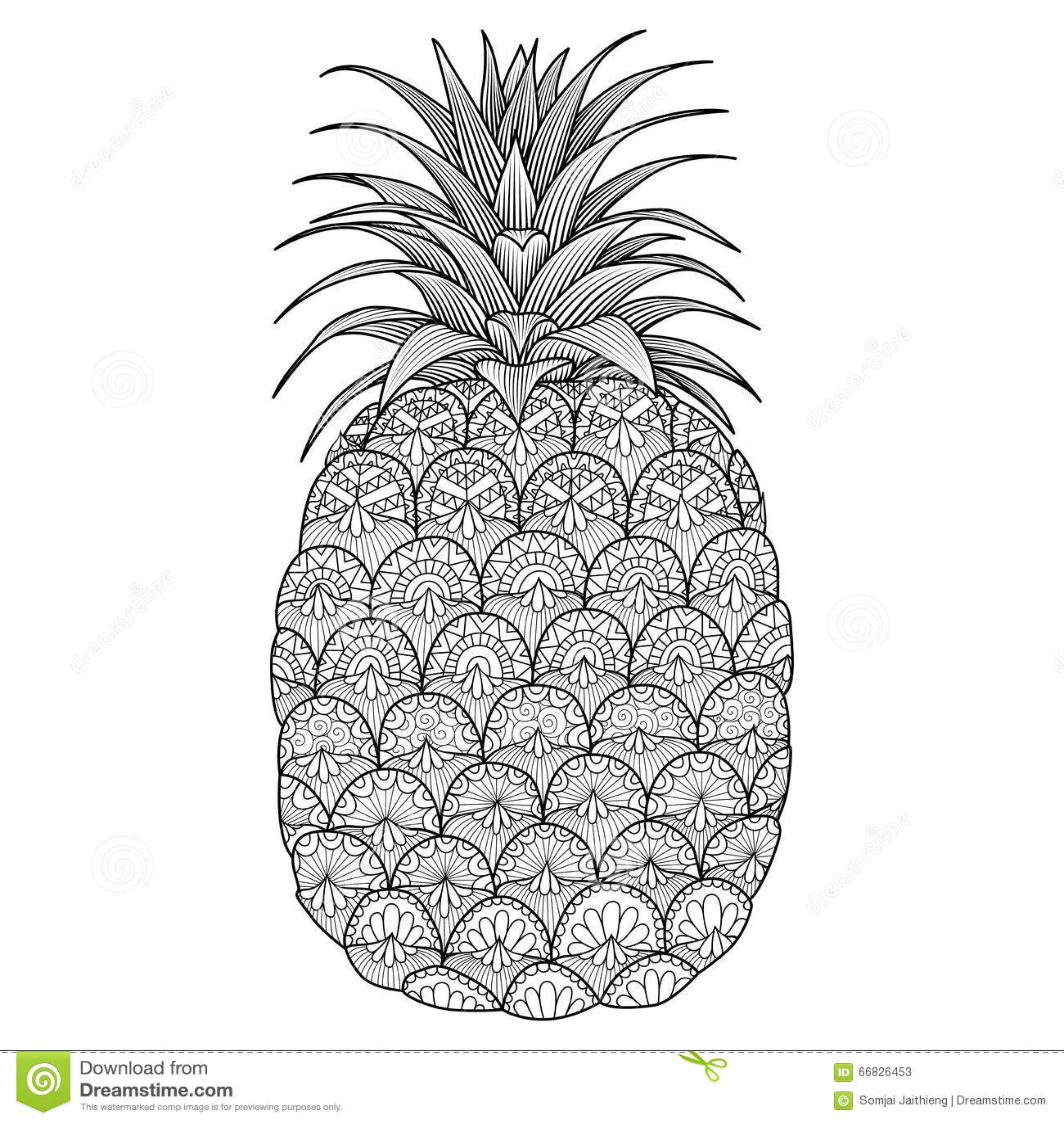Pineapple Line Art Design Stock
