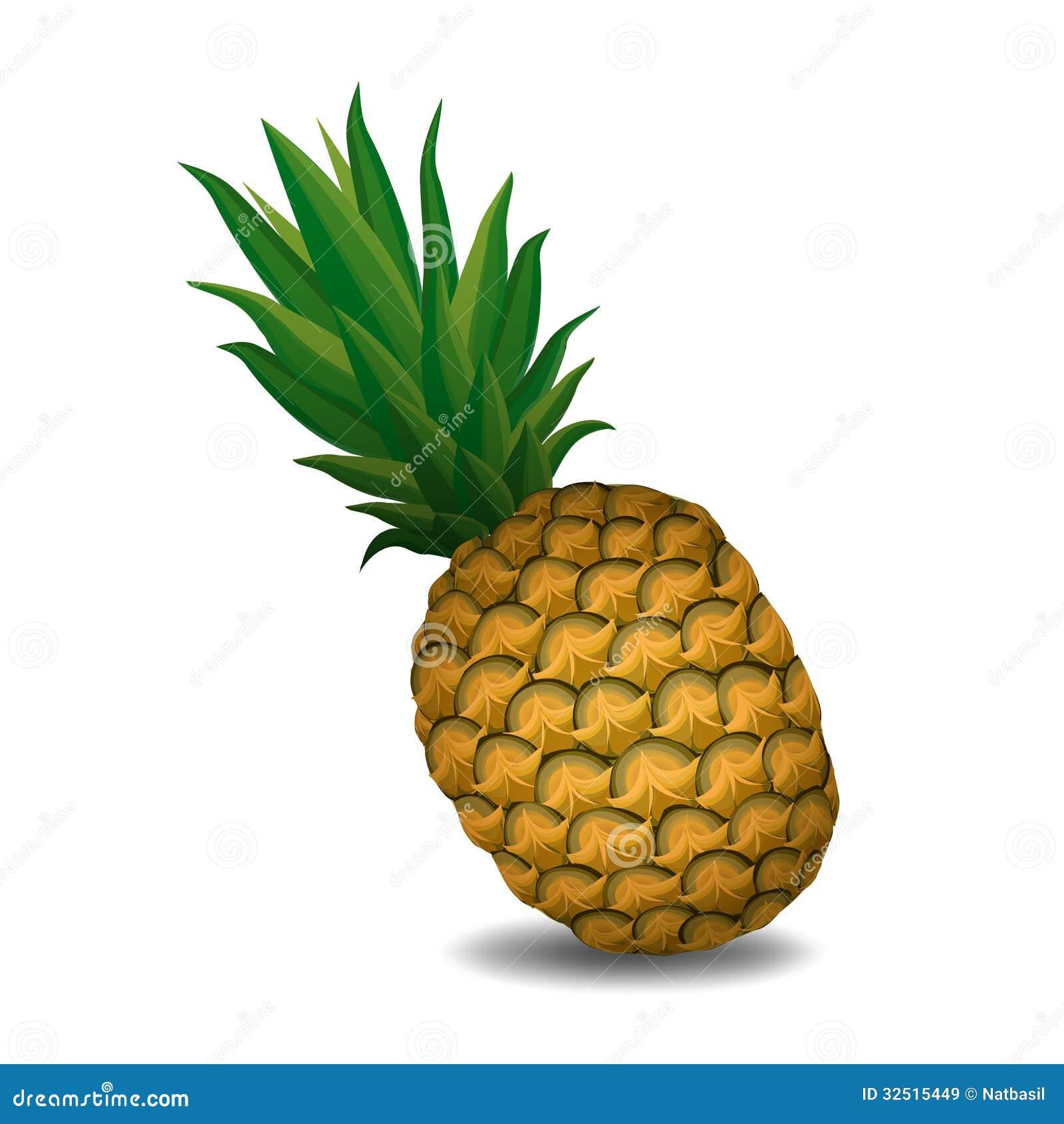 Pineapple Pineapple On White Background Stock Vector ...