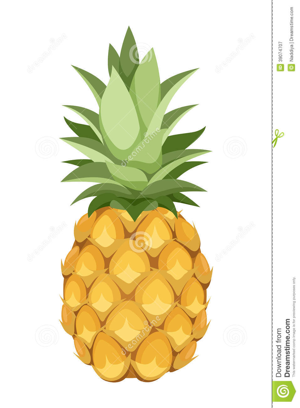 Pineapple. Vector Illustration. Stock Vector - Image: 39074707
