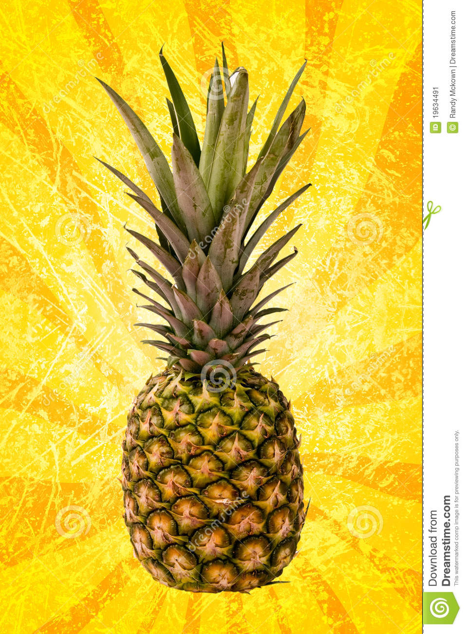 pineapple on yellow spiral stock image image 19634491