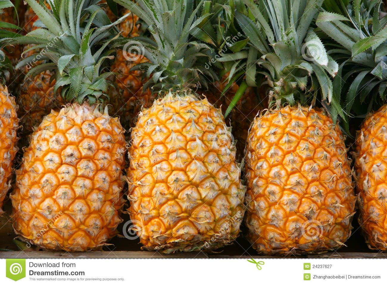 Pineapples Royalty Free Stock Photography - Image: 24237627