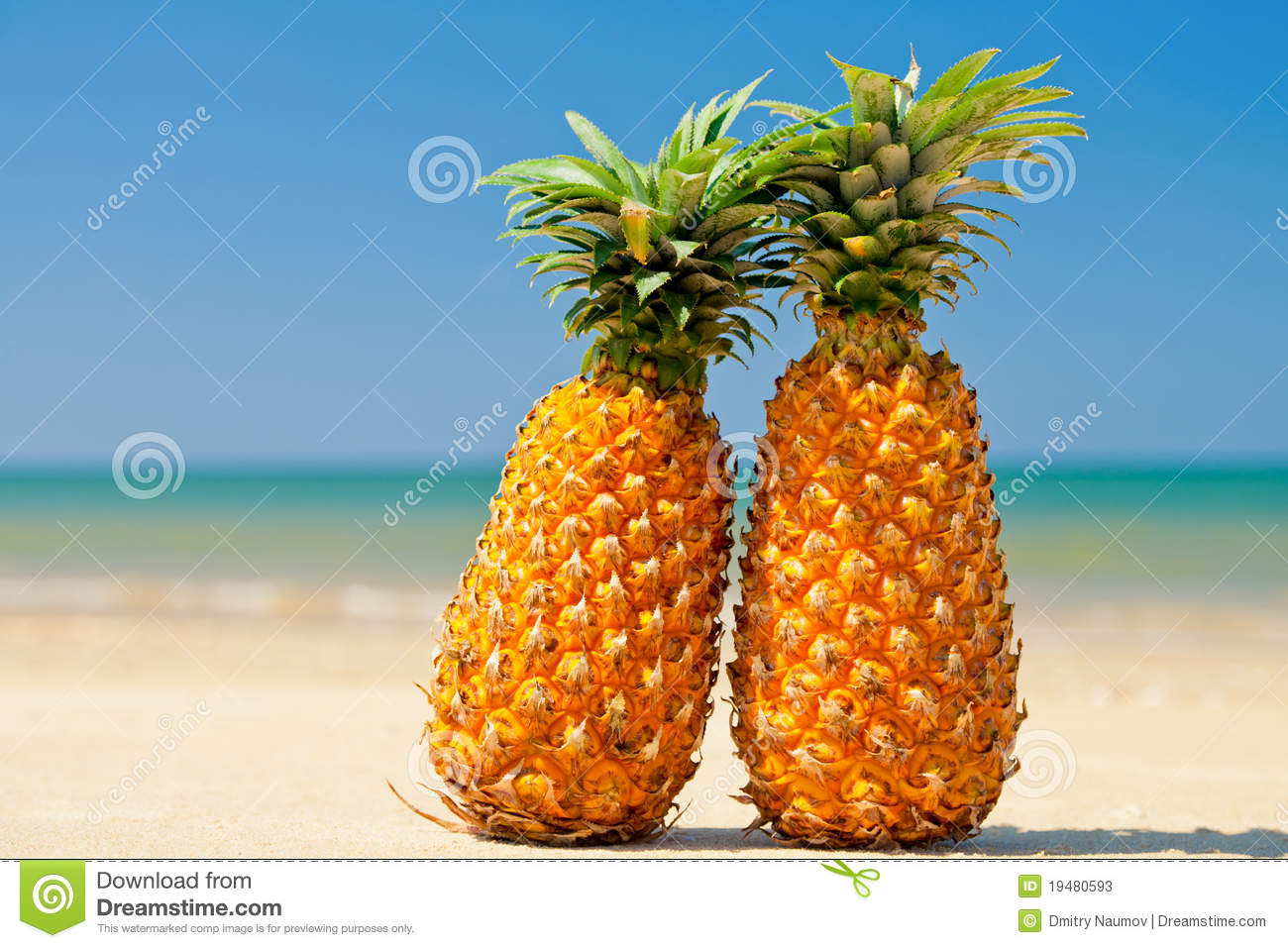 Pineapple At The Beach: Pineapples On The Beach Stock Image. Image Of Sand