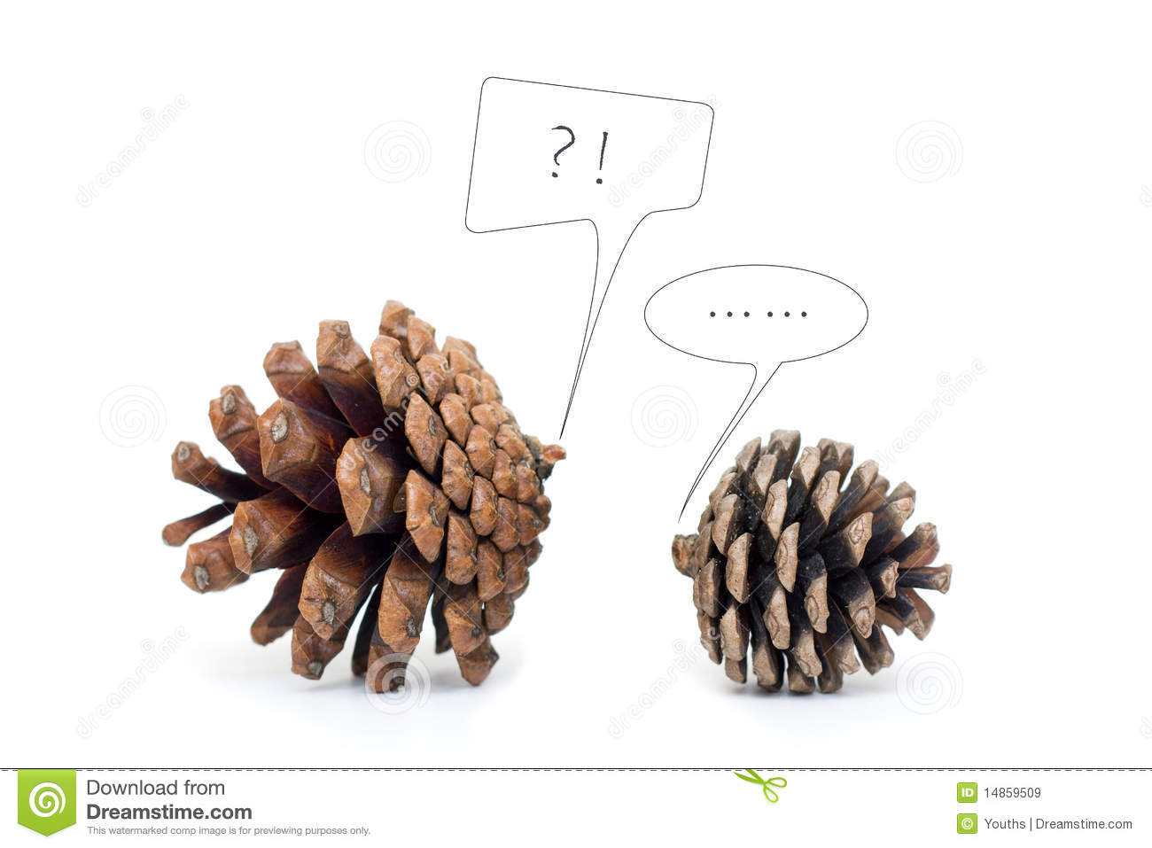 Pinecone Dialogue isolated on white background