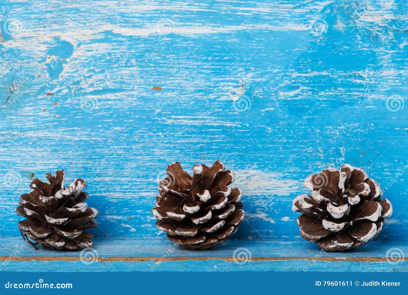 Pinecone na madeira