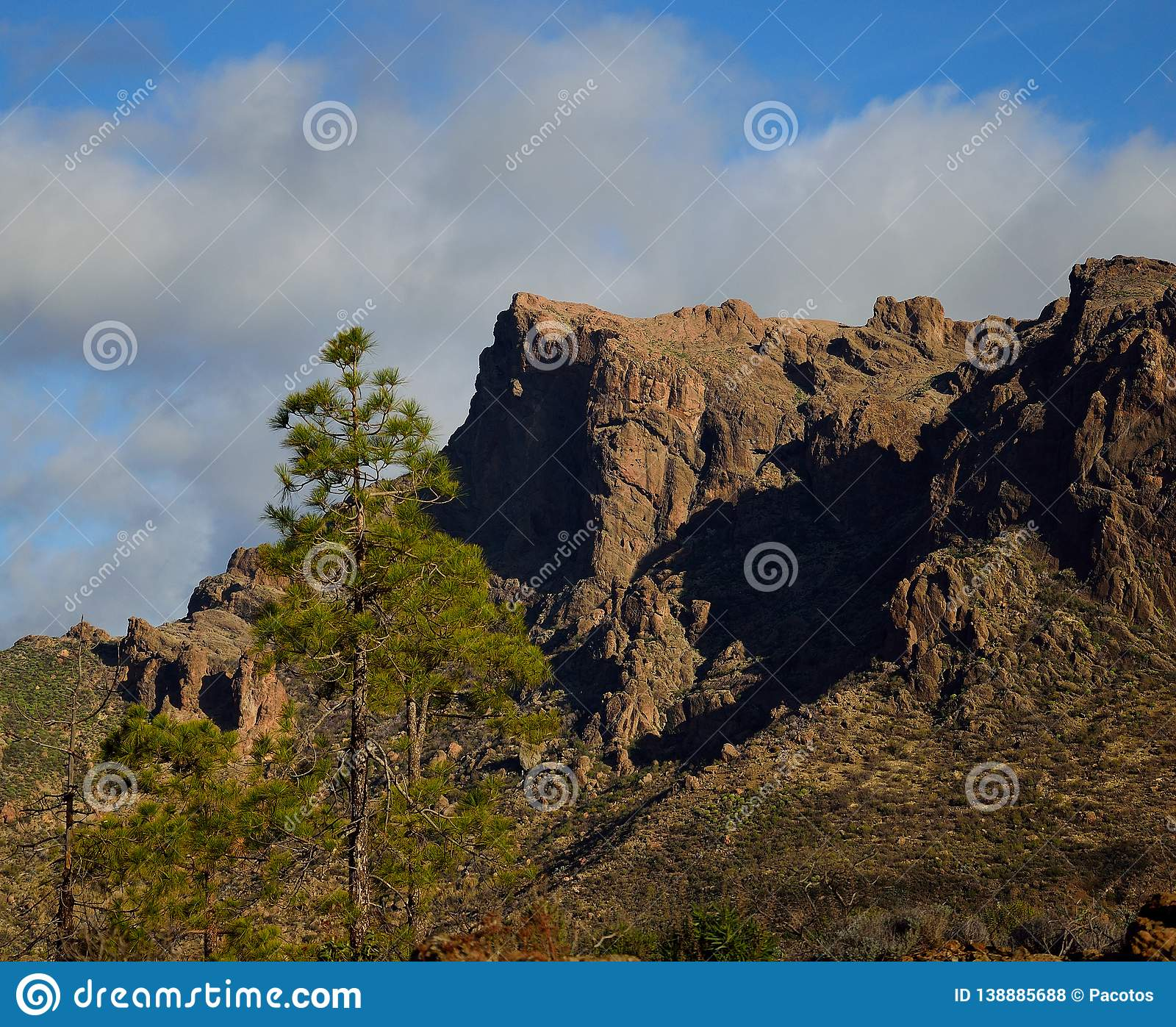 Pines and cliffs, La Plata, Gran Canaria