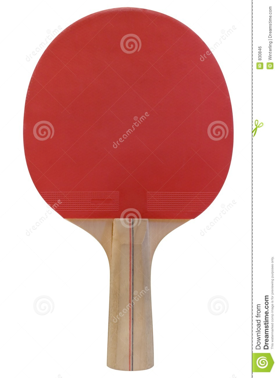 Ping Pong Paddle w/ Path
