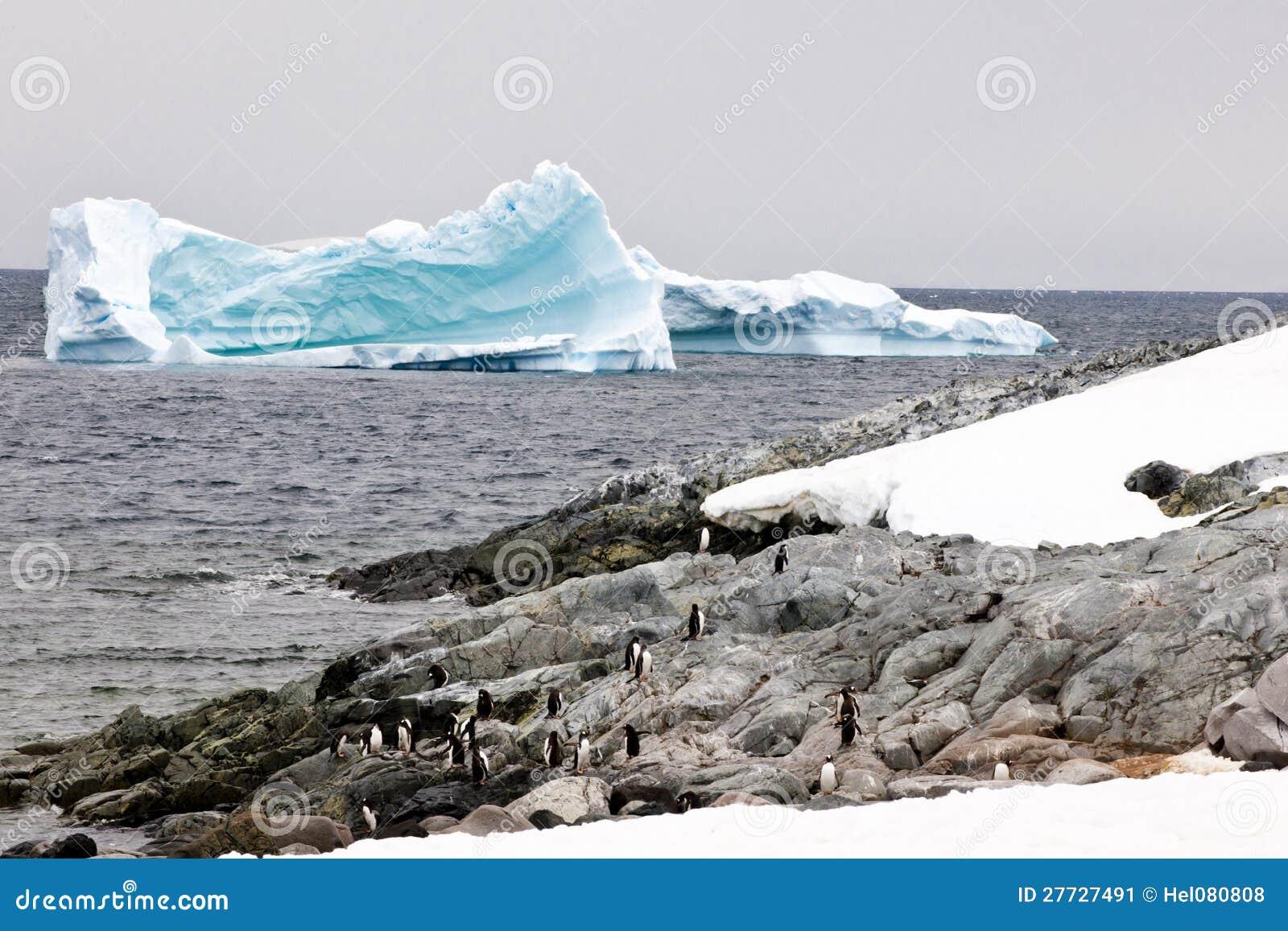 Pinguine und Eisberge