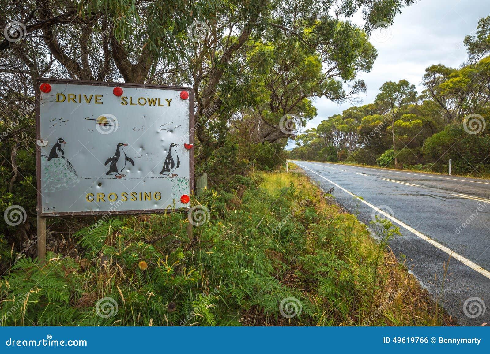 Pinguins que cruzam o sinal