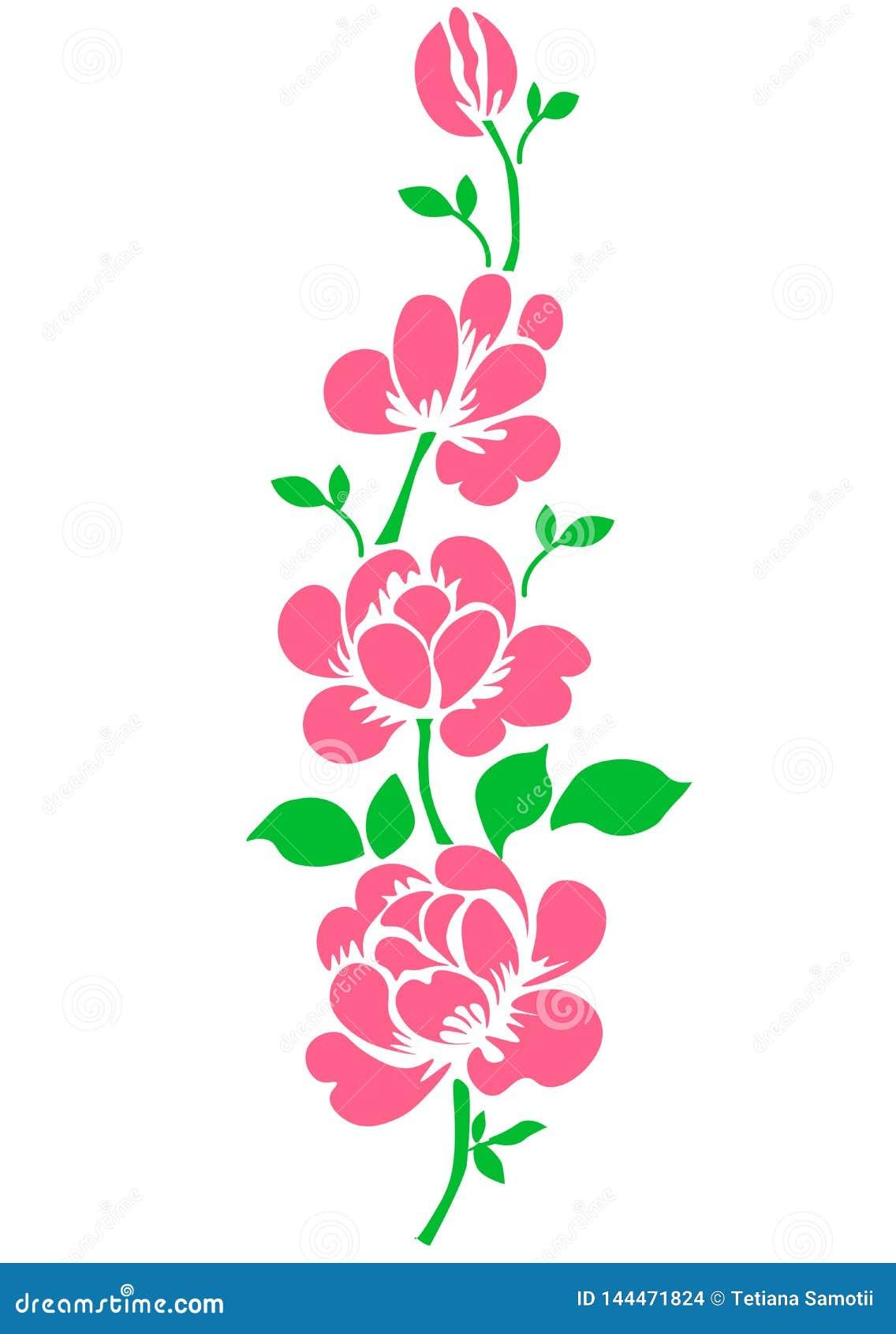 Сеть Пинк поднял Изолированный цветок сада букета на белой предпосылке Реалистическое искусство иллюстрации вектора Украшение для