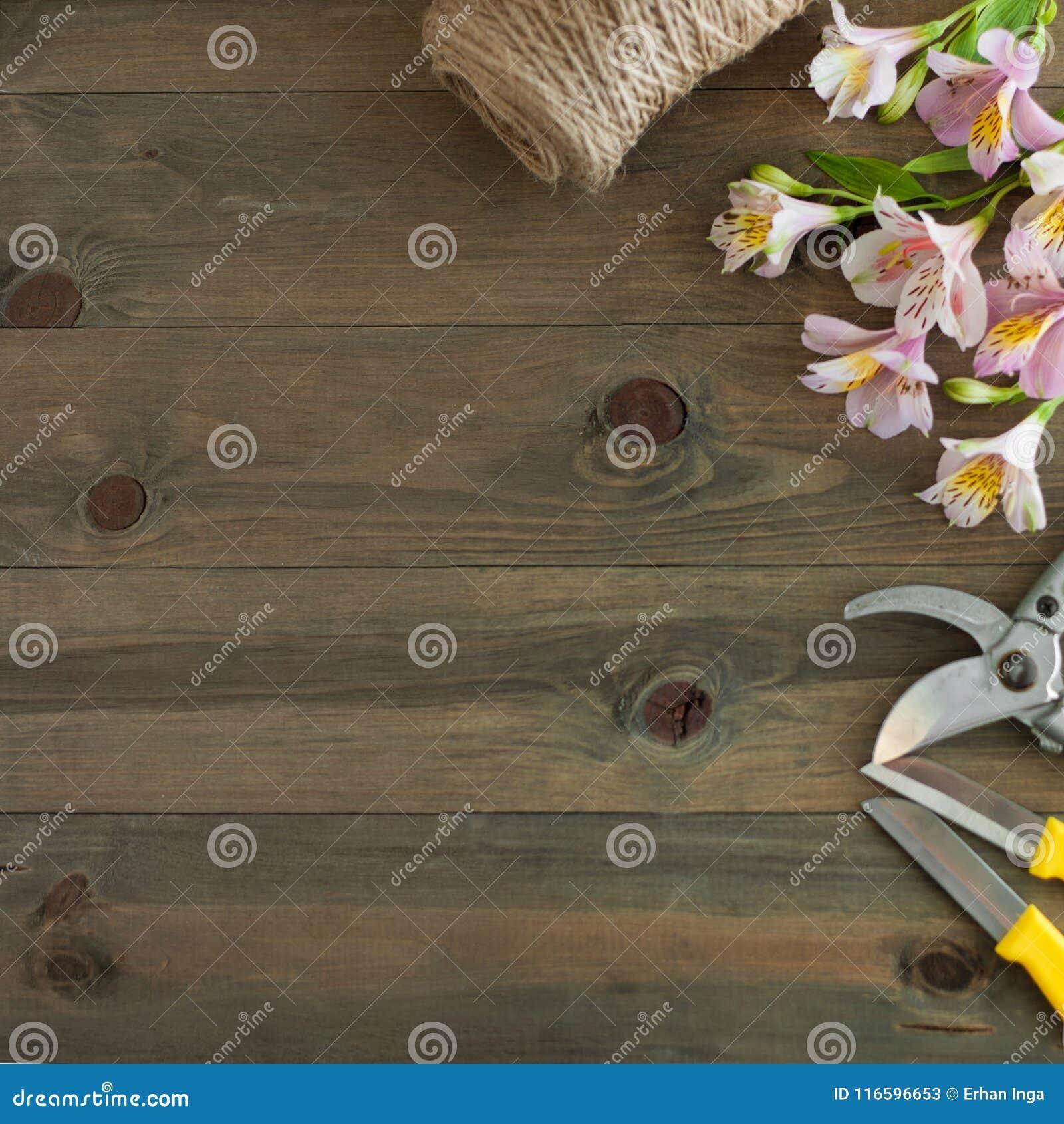 Pink Alstromeria Flowers On Wooden Background With Garden Floristic ...