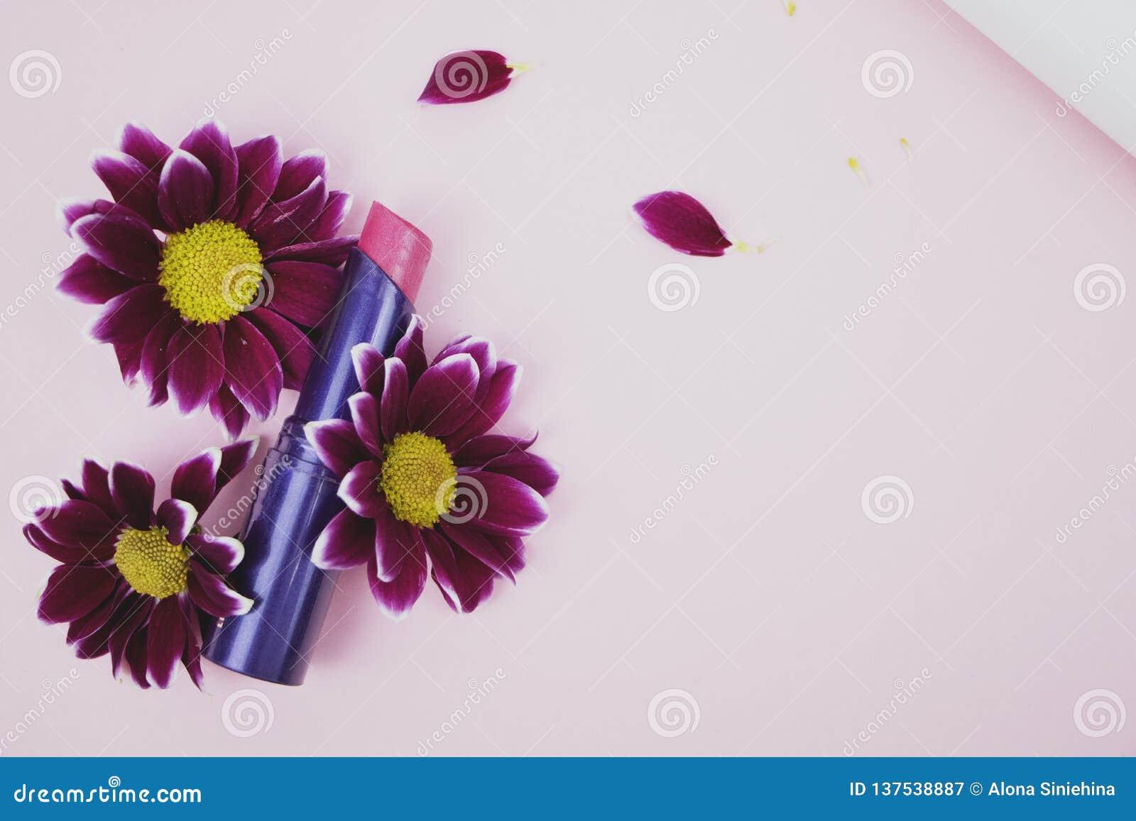 Red Lipstick In Chrysanthemum Flowers Perfume Pink Background
